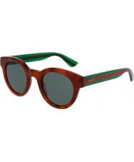 Gucci Mens gg0002s havana grønne solbriller
