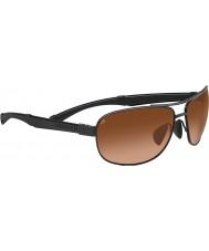 Serengeti Norcia sorte drivere gradient solbriller
