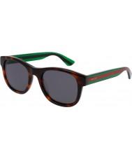 Gucci Mens gg0003s havana grønne solbriller
