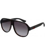 Gucci Mens gg0009s havana brune solbriller