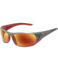 Bolle Blacktail skinnende antracit rødt TNS brand solbriller