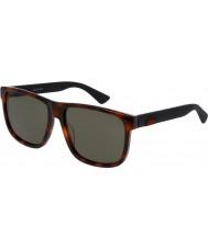 Gucci Mens gg0010s havana sorte solbriller