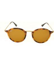 RayBan Rb2447 49 ikoner skildpaddeskal solbriller