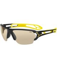 Cebe S-track store skinnende sorte solbriller