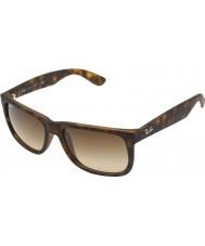 RayBan Rb4165 55 justin gummi lys skildpaddeskal 710-13 solbriller