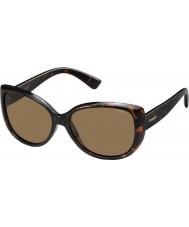 Polaroid Ladies pld4031-s q3v ig mørk havana polariserede solbriller