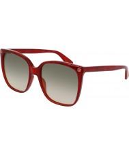 Gucci Ladies gg0022s røde solbriller