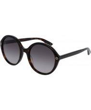 Gucci Ladies gg0023s havana solbriller