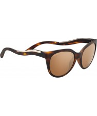 Serengeti 8574 lia tortoise solbriller