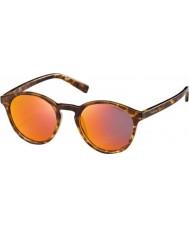 Polaroid Pld6013-s ppt oz blond havana polariserede solbriller
