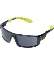 Cebe Ice 8000 antracit blå anis solbriller