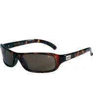 Bolle Fang mørk skildpaddeskal TNS-solbriller