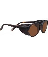 Serengeti 8587 leandro glacier tortoise solbriller