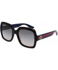 Gucci Ladies gg0036s Havana blå solbriller