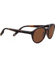 Serengeti 8595 leandro tortoise solbriller