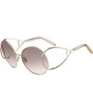 Chloe Ladies ce124s guld og fersken solbriller