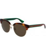 Gucci Mens gg0058sk havana grønne solbriller