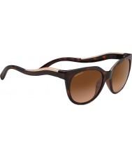 Serengeti 8572 lia tortoise solbriller