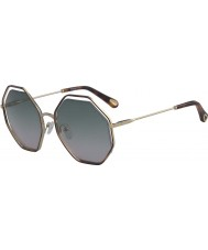 Chloe Dame ce132s 240 58 valmue solbriller