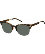 Polaroid Herre pld2031-s nho rc havana guld polariseret solbriller