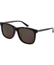 Gucci Mens gg0078sk havana grå solbriller