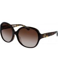 Gucci Ladies gg0080sk havana solbriller