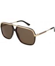Gucci Gg0200s 002 57 solbriller
