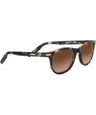 Serengeti 8690 andrea toroiseshell solbriller