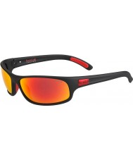 Bolle 12447 anaconda sorte solbriller