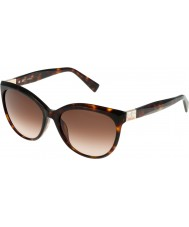 Furla Ladies Zizi su4896s-743 skinnende brune havana-gule solbriller