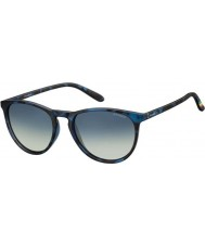 Polaroid Pld6003-n sek Z7 Havana blå polariseret solbriller