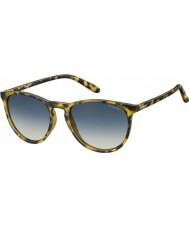Polaroid Pld6003-n SLG pw havana gule polariserede solbriller