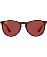 RayBan Erika rb4171 54 6339d0 solbriller