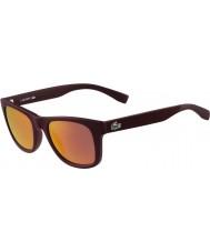 Lacoste L790s matte bordeaux solbriller