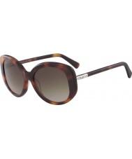 Longchamp Ladies lo601s 214 55 solbriller
