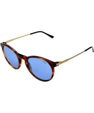 Polo Ralph Lauren Ph4096 50 klassiske flair stribet havana 500772 solbriller