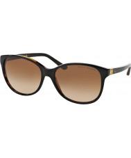 Ralph Lauren Ladies rl8116 57 526013 solbriller
