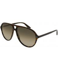 Gucci Herre gg0119s 002 solbriller