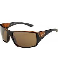 Bolle 12134 tigersnake brune solbriller