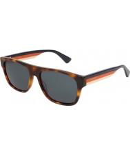 Gucci Herre gg0341s 004 56 solbriller