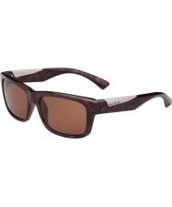 Bolle Jude skinnende skildpaddeskal polariseret a-14 solbriller