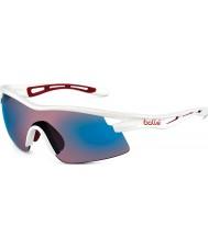Bolle Vortex skinnende hvid rose blå solbriller