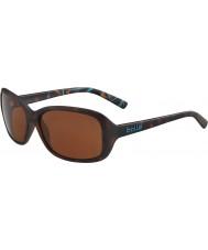 Bolle 12242 molly tortoise solbriller